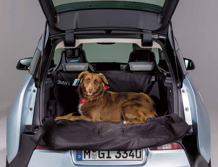 BMW Pet Travel Accessories for Car
