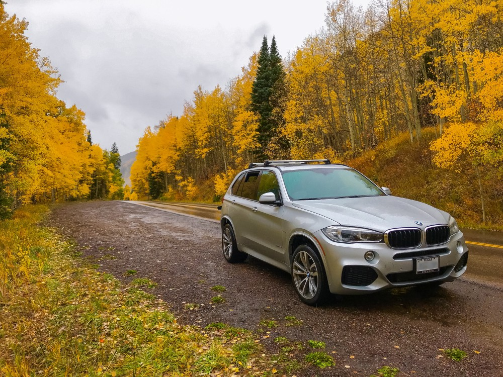 bmw x5 in forest